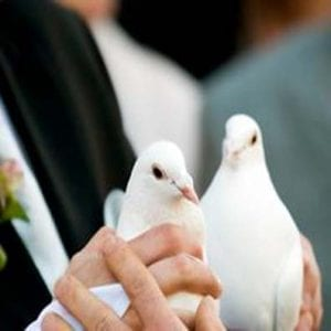 Wedding-Ministerial Service